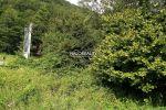 rekreačný pozemok - Janova Lehota - Fotografia 7