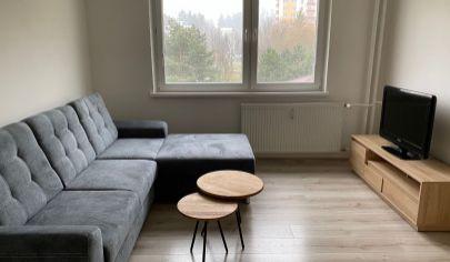 Zrekonštruovaný 1-izbový byt, Vlčince 3