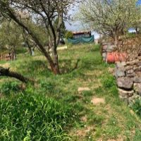 Záhrada, Kremnica, 327 m²