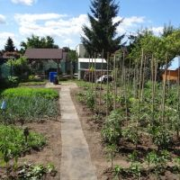 Záhrada, Senec, 202 m²