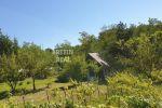 rekreačný pozemok - Stupava - Fotografia 13