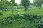 rekreačný pozemok - Stupava - Fotografia 16
