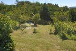 rekreačný pozemok - Stupava - Fotografia 18