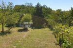rekreačný pozemok - Stupava - Fotografia 21