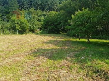 Rekreačný pozemok 1784 m2 v obci Čierna Lehota
