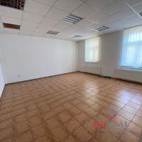 Polyfunkčný objekt, Topoľčany, 35 m², Kompletná rekonštrukcia