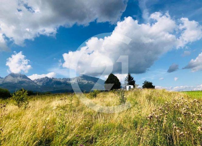 trvalý trávnatý porast - Batizovce - Fotografia 1