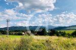 trvalý trávnatý porast - Batizovce - Fotografia 2