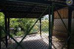 chata - Janova Lehota - Fotografia 12