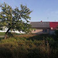 Rodinný dom, Alekšince, 96 m², Pôvodný stav