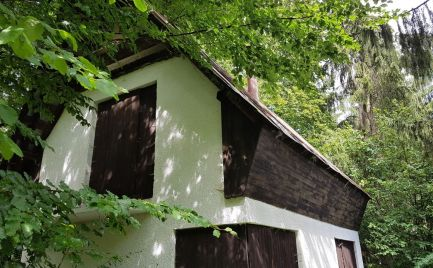Chata v lese na samote - Králiky, okres Banská Bystrica