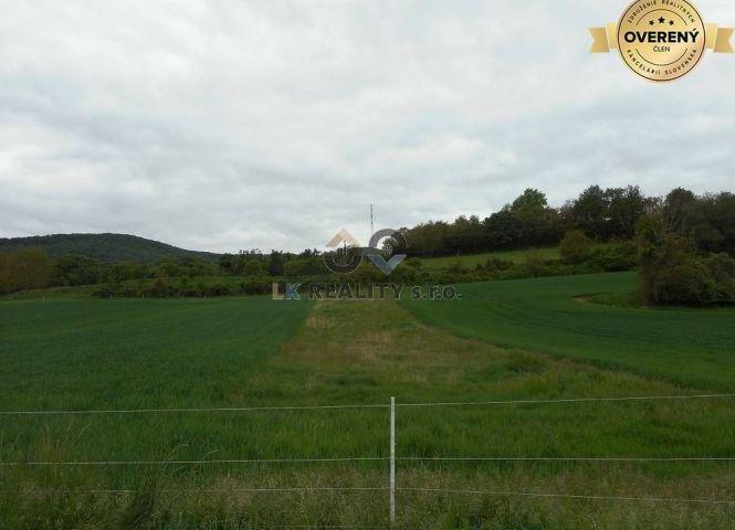 rekreačný pozemok - Trenčianske Stankovce - Fotografia 1
