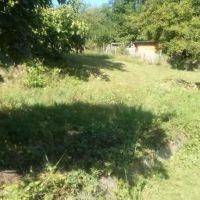 Záhrada, Stupava, 765 m²