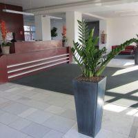 Kancelárie, Bratislava-Rača, 500 m², Kompletná rekonštrukcia