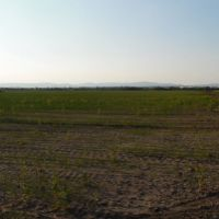 Orná pôda, Senec, 120900 m², Pôvodný stav