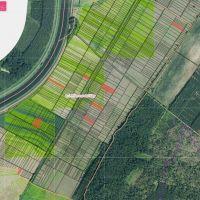 Orná pôda, Petrova Ves, 15650 m²