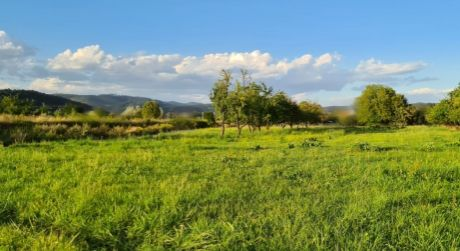 Pozemok 700 m2, Dolný Hričov