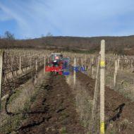 Vinohrad v Rači - lokalita Kamilková ul - Ligizlant - 16,5 árov