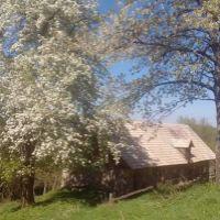 Trvalý trávnatý porast, Kozelník, 136000 m²