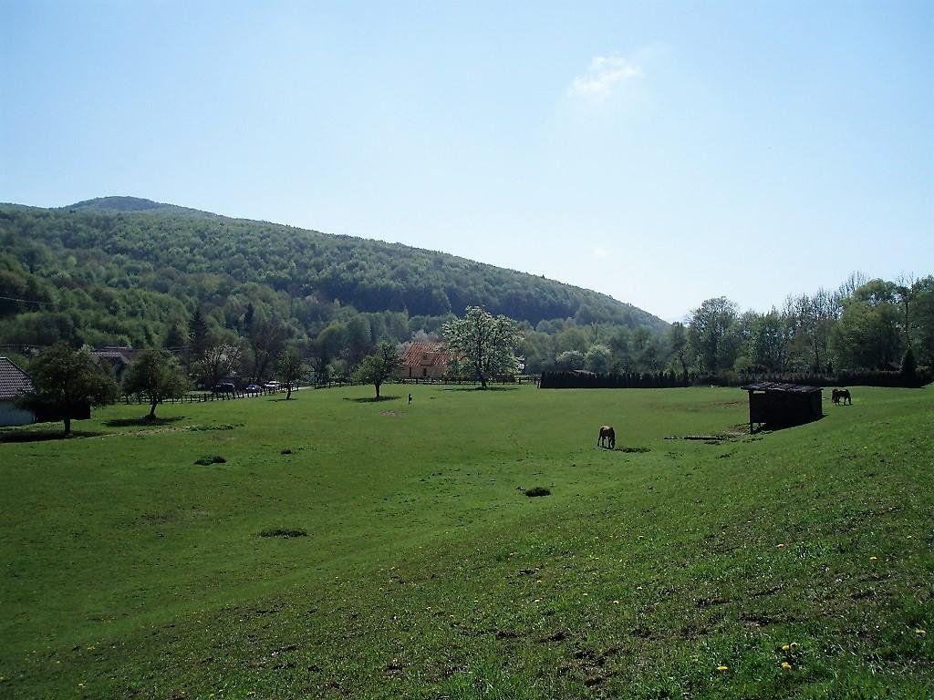 Pekná usadlosť s veľkým krásnym pozemkom – Stredné Považie na predaj