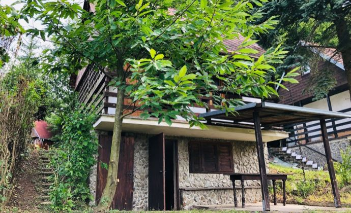 Predaj murovanej chaty v záhradkárskej oblasti Jamy, Sološnica