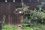Rodinný dom - Hronec - Fotografia 29