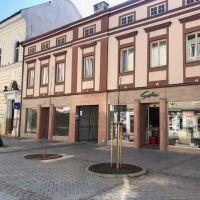 Polyfunkčný objekt, Nitra, 800 m², Kompletná rekonštrukcia