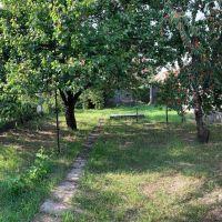 Záhrada, Senec, 227 m², Pôvodný stav