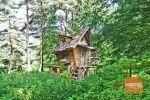 rekreačný pozemok - Pliešovce - Fotografia 3