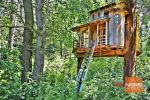 rekreačný pozemok - Pliešovce - Fotografia 8
