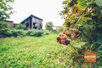 Rodinný dom - Oreské - Fotografia 31