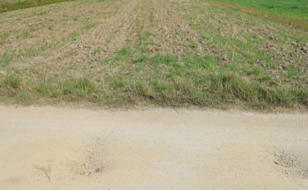 Slnečný rovinatý pozemok v Turanoch o rozlohe 1000m
