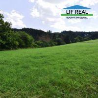 Trvalý trávnatý porast, Belá-Dulice, 3004 m²