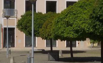 Na prenájom Obchodný priestor 400 m2 v centre mesta Nové Mesto nad Váhom.