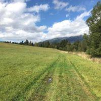 Poľnohospodárska pôda, Važec, 14886 m²