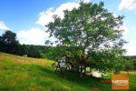 Rodinný dom - Krupina - Fotografia 17