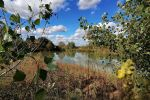 vodné plochy - Kubáňovo - Fotografia 12