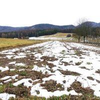 Orná pôda, Čelkova Lehota, 743 m²