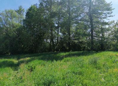 Ponúkame na predaj pozemok na výstavbu rodinného domu v obci Motešice.