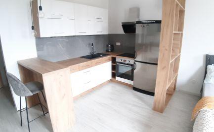 Na prenájom 1 izbovy byt v novostavbe s garážovým státim