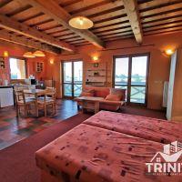 Hotel, Trávnica, 430 m², Pôvodný stav