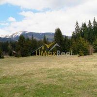 Rekreačný pozemok, Pribylina, 2900 m², Pôvodný stav