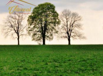 Predáme pozemok určený na IBV - Záborské