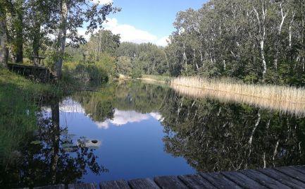 Ponúkame na predaj stavebný pozemok v Madarsku v obci Dunasziget, 30km od BA