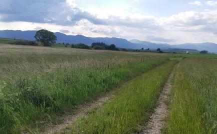 INVESTIČNÁ PRÍLEŽITOSŤ – orná pôda v obci Mošovce