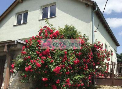 Areté real, Predaj priestranného rodinného domu s 1094 m2 pozemkom vo výbornej lokalite v Modre