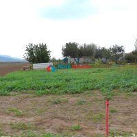 Orná pôda, Čeľadice, 3614 m²