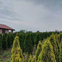 Pre rodinné domy, Cabaj-Čápor, 680 m²