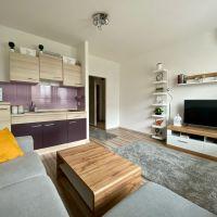 1 izbový byt, Bratislava-Petržalka, 29.50 m², Čiastočná rekonštrukcia