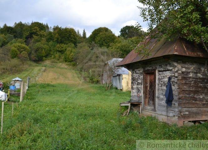 záhrada - Makovce - Fotografia 1